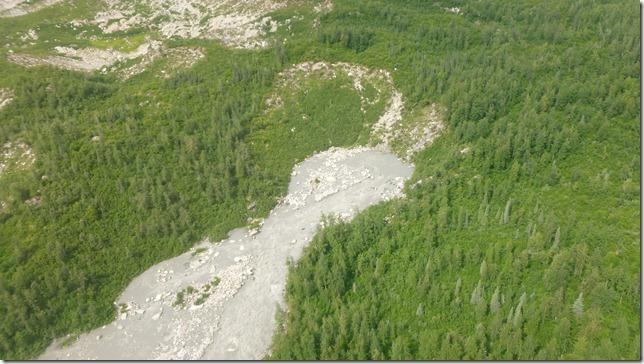 Alaska July 20 11 Talkeetna to Anch (105)