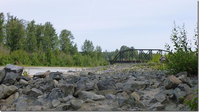 Alaska July 20 11 Talkeetna to Anch (138)