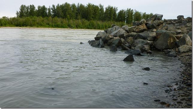 Alaska July 20 11 Talkeetna to Anch (1)