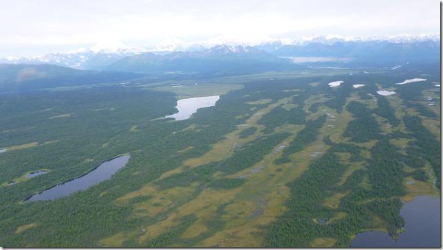 Alaska July 20 11 Talkeetna to Anch (23)