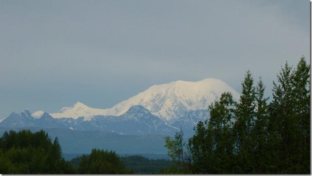 Alaska July 20 11 Talkeetna to Anch (6)