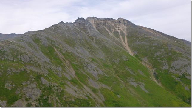 Alaska July 20 11 Talkeetna to Anch (98)