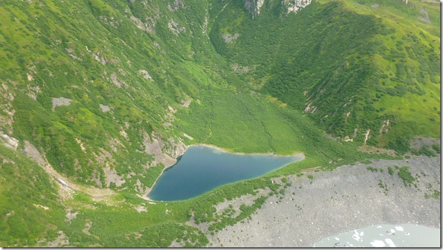 Alaska July 20 11 Talkeetna to Anch (99)
