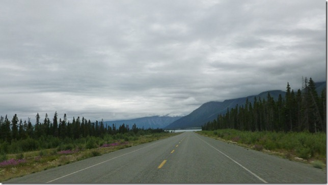 Alaska July 29 11 Tok to Haines Junction (50)