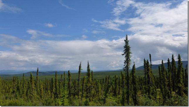 Alaska July 8 11 Dempster Hwy (10)