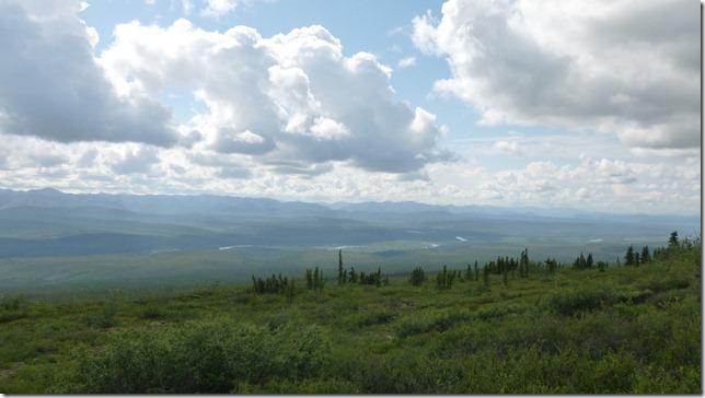 Alaska July 8 11 Dempster Hwy (21)