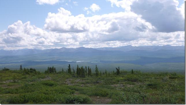 Alaska July 8 11 Dempster Hwy (23)