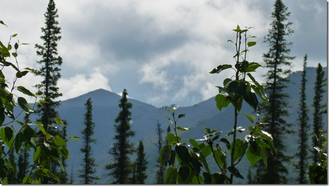 Alaska July 8 11 Dempster Hwy (29)