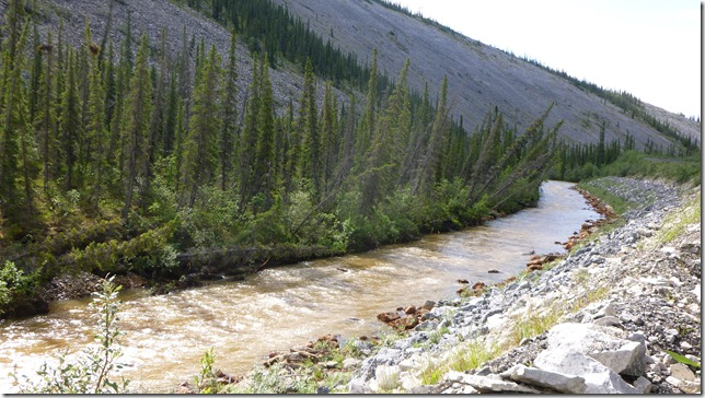 Alaska July 8 11 Dempster Hwy (35)