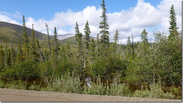 Alaska July 8 11 Dempster Hwy (39)