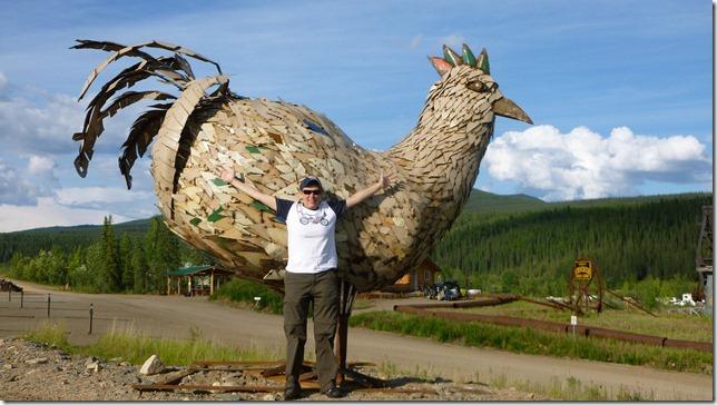 Chicken July 10 11 (12)
