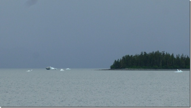 glacier ice (12)
