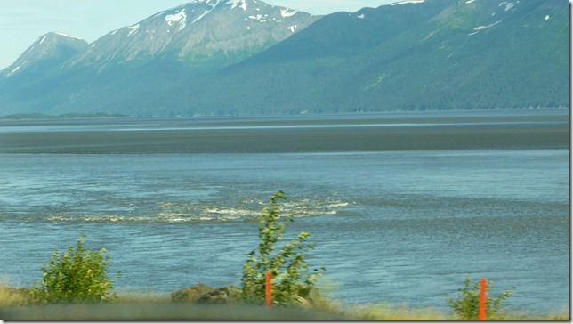 July 21 11 Anchorage (8)