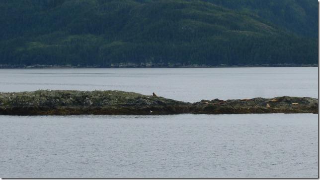 July 26 11 Ferry (4)
