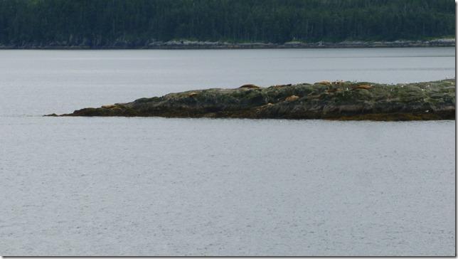 July 26 11 Ferry (5)