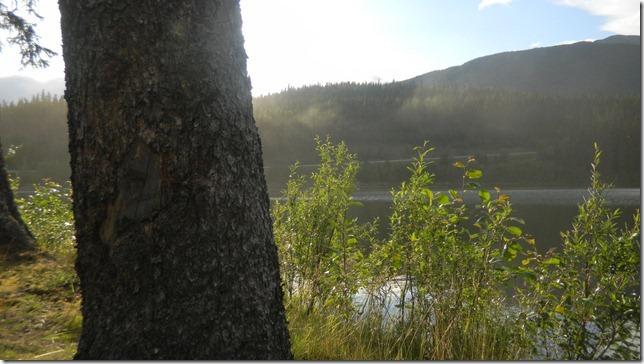 Alaska Aug 1 11 Cheryl (4)
