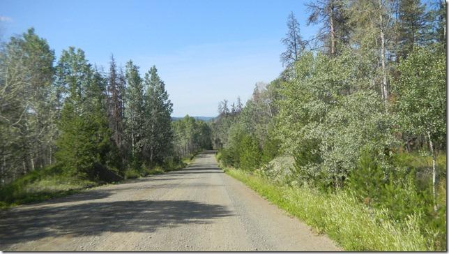 Alaska Aug 11 11 (12)