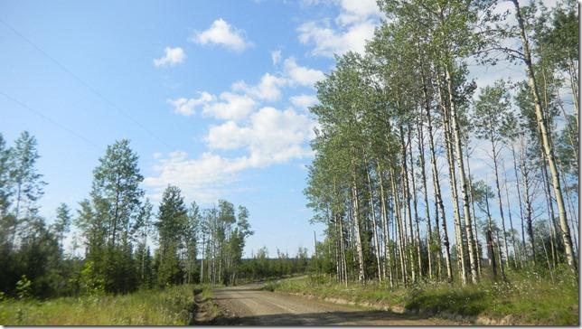Alaska Aug 11 11 (2)