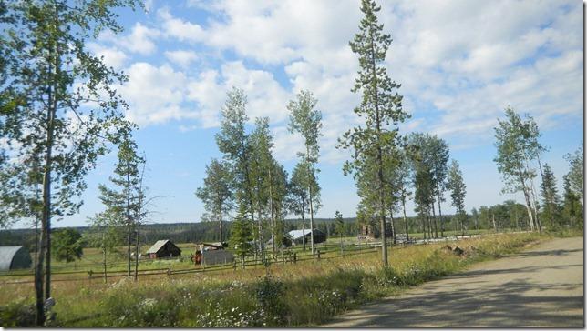 Alaska Aug 11 11 (3)