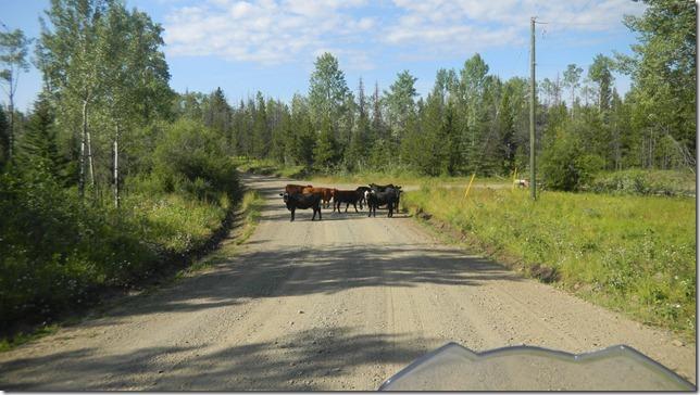 Alaska Aug 11 11 (6)