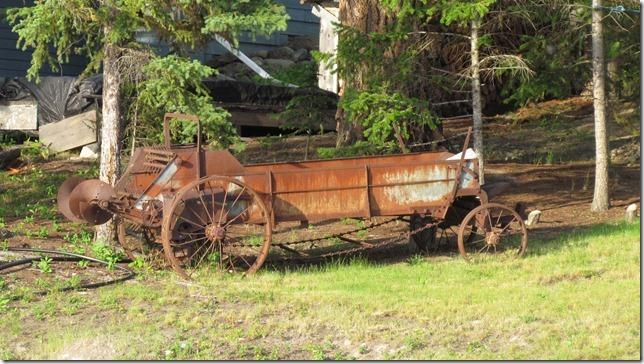 Aug 9 11 canoe (19)