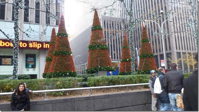 Jan 1 12 NYC (102)