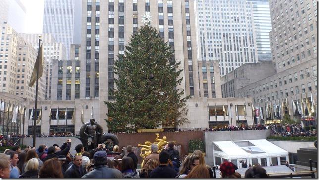 Jan 1 12 NYC (106)