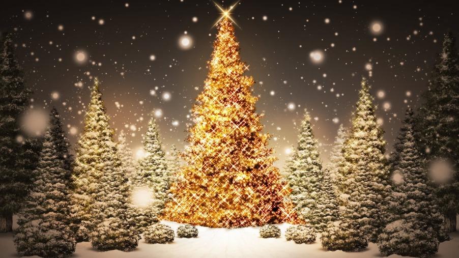 Sparkling-Christmas-Trees