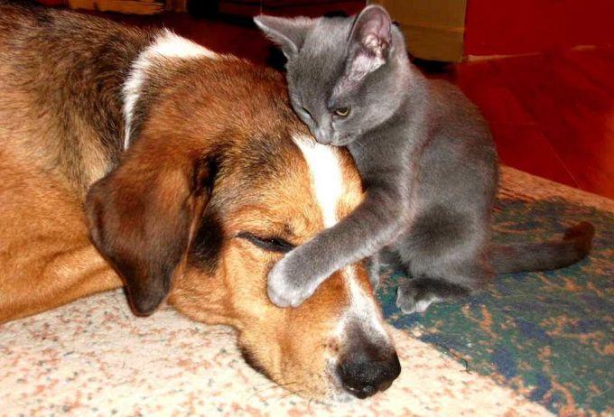 3. A gentle hug my big boy