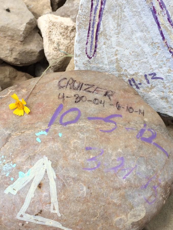 Cruizer's memorial in South Dakota