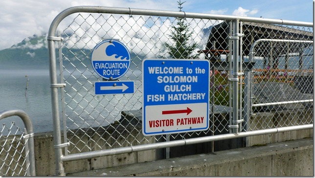 July 27 11 Valdez to Chitina (10)
