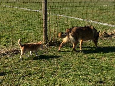 Sierra & Xander Best friends